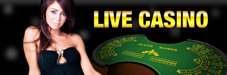 live online casino novo casino